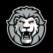 Medienpartnerschaft zwischen Stadtleben.de und den Löwen Frankfurt geht in die 4. Saison